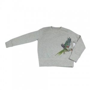 Parrot Jumper
