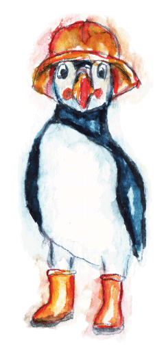 Patrick the Puffin